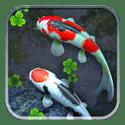 Живые шпалеры  со Кои во пруду
